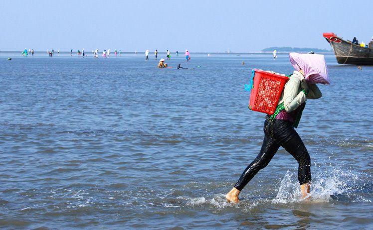 最美景点-越南投资,胡志明市鲜为人知令人惊讶的美丽岛屿,越南证券,建设证券(5)